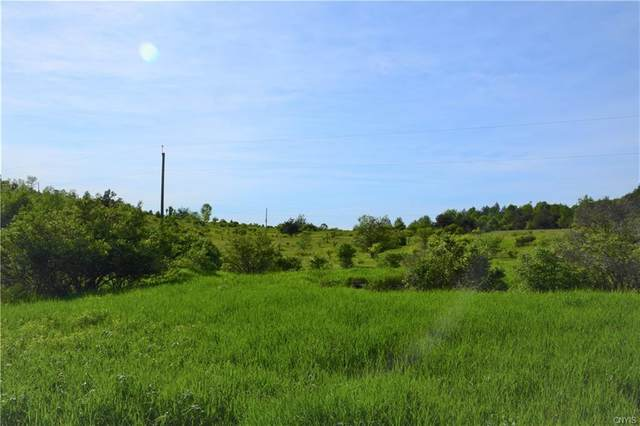 Lot 6 Skaneateles Turnpike, Plainfield, NY 13491 (MLS #S1277399) :: Lore Real Estate Services