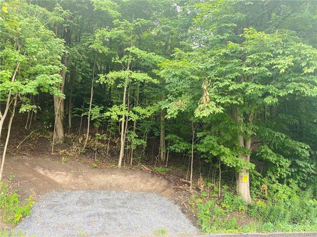 000 Whiting Road, Elbridge, NY 13060 (MLS #S1278278) :: Robert PiazzaPalotto Sold Team
