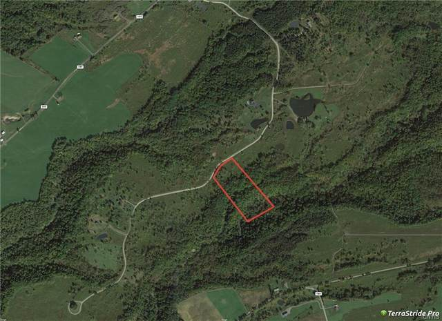 0 Cogar Drive, Schuyler, NY 13340 (MLS #S1278473) :: Lore Real Estate Services