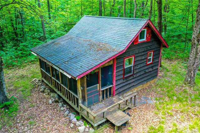 12123 Popple Knoll Road, Croghan, NY 13327 (MLS #S1278868) :: Robert PiazzaPalotto Sold Team