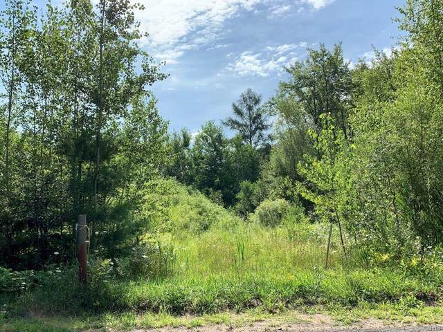 000 W Lot 29 Shanty Creek Road E, Hastings, NY 13036 (MLS #S1278891) :: Lore Real Estate Services