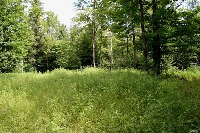 00 Us Rt 11 - Lot #1, Hastings, NY 13076 (MLS #S1278955) :: BridgeView Real Estate Services
