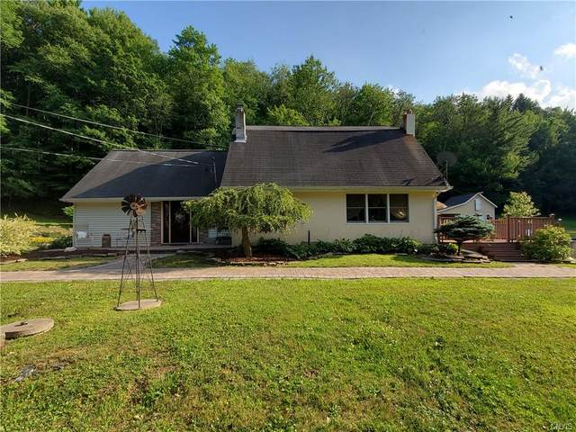 505 Melondy Hill Road, Afton, NY 13730 (MLS #S1279096) :: Robert PiazzaPalotto Sold Team
