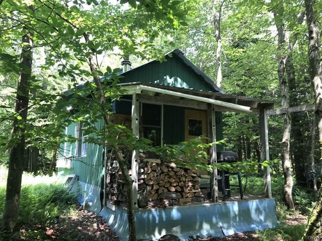 00 Wagon Wheel Road, Osceola, NY 13325 (MLS #S1279120) :: Lore Real Estate Services
