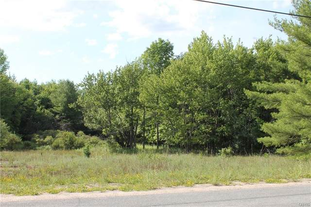 0 Grass Lake Road, Theresa, NY 13691 (MLS #S1279539) :: 716 Realty Group