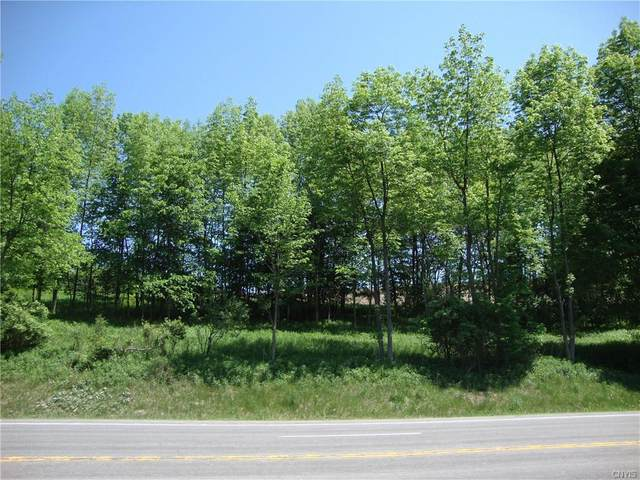 0 Us Rt 20 Ns, Bridgewater, NY 13313 (MLS #S1280734) :: Robert PiazzaPalotto Sold Team