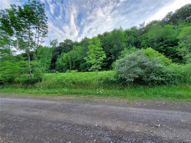 0 Morgan Hill Road, Truxton, NY 13158 (MLS #S1281037) :: 716 Realty Group