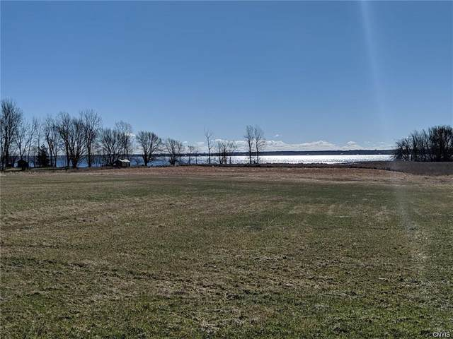 0 Co Route 57, Lyme, NY 13693 (MLS #S1281203) :: Robert PiazzaPalotto Sold Team