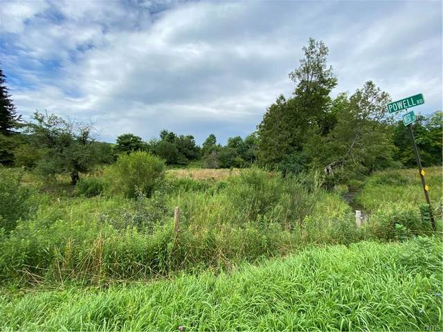 0 West Road, West Turin, NY 13325 (MLS #S1282850) :: Robert PiazzaPalotto Sold Team