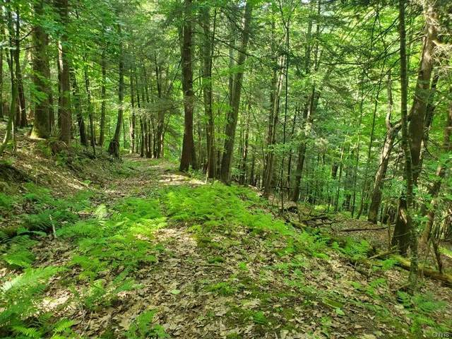 00 County Route 62, Greenwood, NY 14839 (MLS #S1283123) :: Lore Real Estate Services