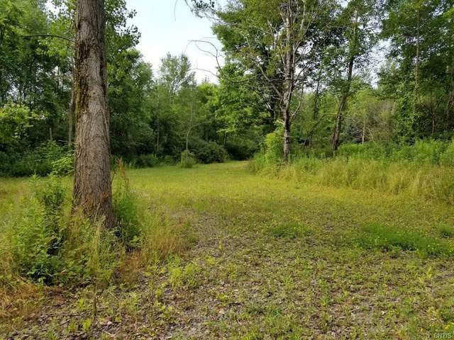144 Middaugh Road, Caroline, NY 14817 (MLS #S1283172) :: Thousand Islands Realty