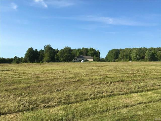 Lot 6 Theriault Road, Hounsfield, NY 13685 (MLS #S1283773) :: 716 Realty Group