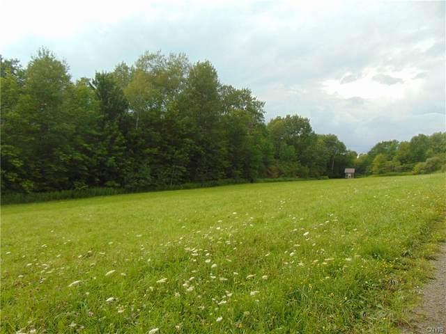 0 Springer Road, Lincklaen, NY 13052 (MLS #S1284664) :: Lore Real Estate Services