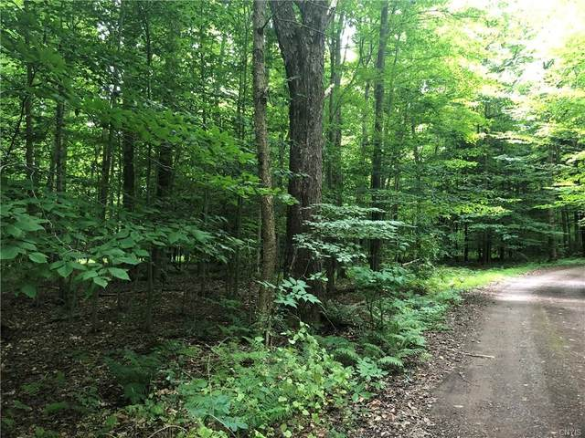 1665 Yuhas Lot #4 Drive, Sterling, NY 13156 (MLS #S1284672) :: Lore Real Estate Services