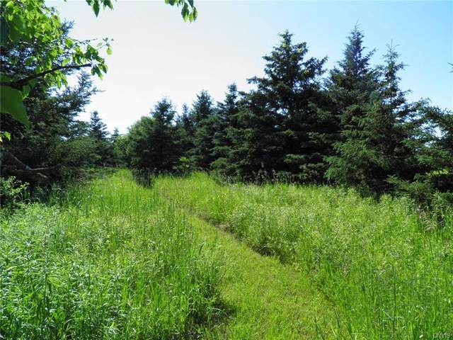 8324 Nys Route 3, Henderson, NY 13650 (MLS #S1284836) :: BridgeView Real Estate Services