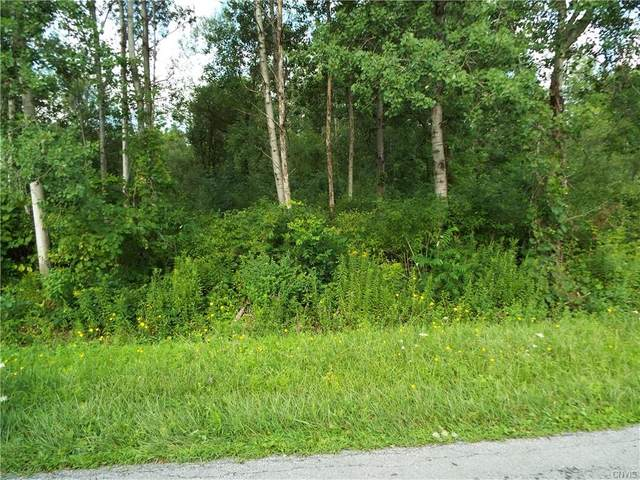 Snell Road (Lot #6) Snell Road, Lenox, NY 13032 (MLS #S1284905) :: Thousand Islands Realty