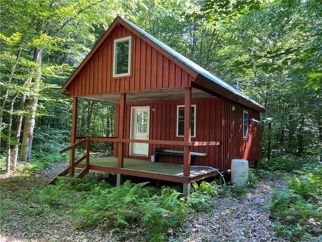 71 Kimball Camp Road, Orwell, NY 13426 (MLS #S1284973) :: Lore Real Estate Services