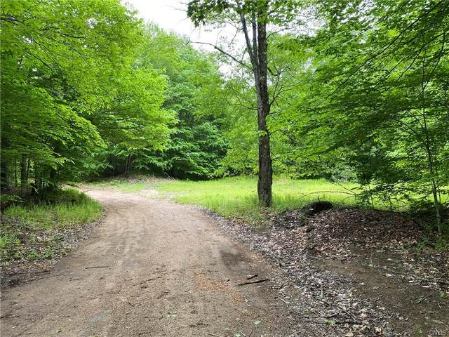 00 Woods Road, Forestport, NY 13338 (MLS #S1285120) :: Avant Realty