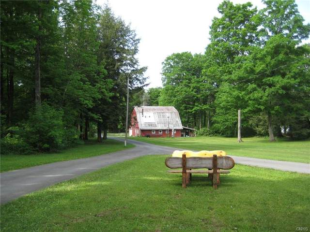 221 Swamp Road, Winfield, NY 13491 (MLS #S1285122) :: Lore Real Estate Services