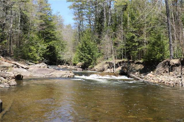 00 Hutchins Swamp Lane, Lewis, NY 12950 (MLS #S1285271) :: 716 Realty Group