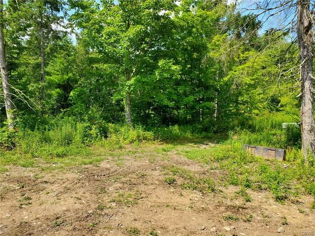 45 Whispering Oaks Lane, Orwell, NY 13302 (MLS #S1285428) :: TLC Real Estate LLC