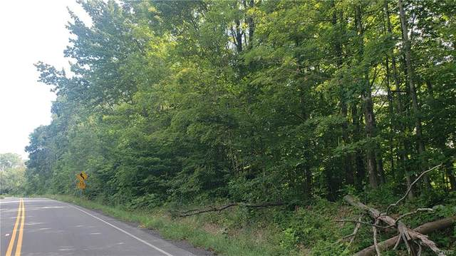 400 County Route 120, Oppenheim, NY 13329 (MLS #S1286419) :: Robert PiazzaPalotto Sold Team