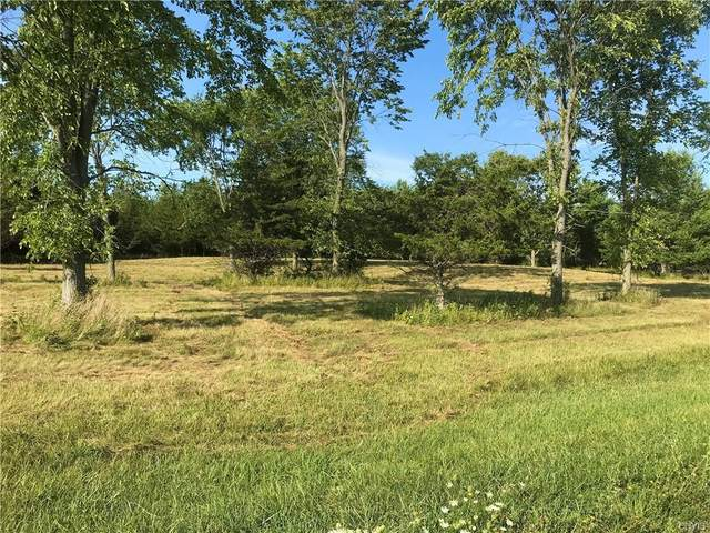 Lot 39 Morin Lane North Lane N, Hounsfield, NY 13685 (MLS #S1286940) :: BridgeView Real Estate Services