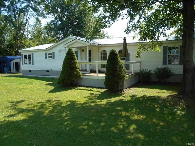 117 Roosevelt Avenue, Sullivan, NY 13032 (MLS #S1288499) :: Lore Real Estate Services