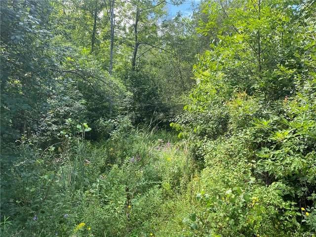 # 17 County Line Road Road #17, Sennett, NY 13021 (MLS #S1288806) :: MyTown Realty