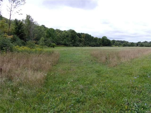 0 Co Route 91, Ellisburg, NY 13636 (MLS #S1289862) :: Lore Real Estate Services