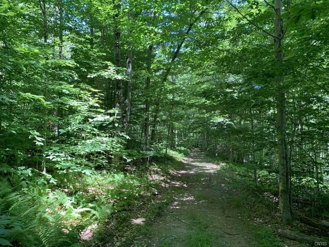 00 Upper Birch Run Road, Allegany, NY 14706 (MLS #S1289984) :: MyTown Realty