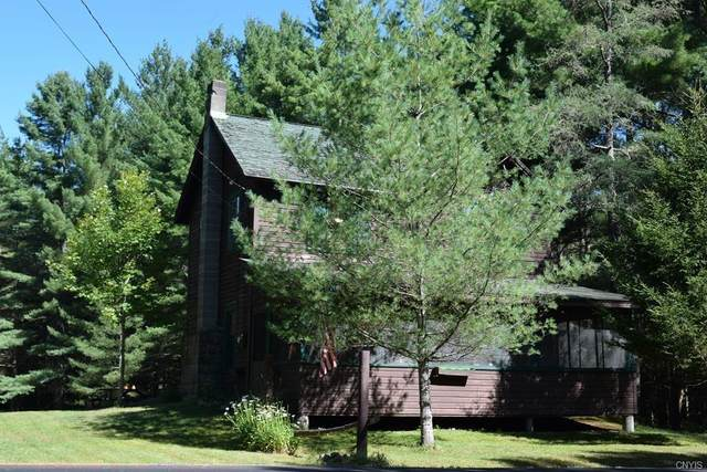 1980 North Point Rd, Long Lake, NY 12847 (MLS #S1290191) :: Robert PiazzaPalotto Sold Team