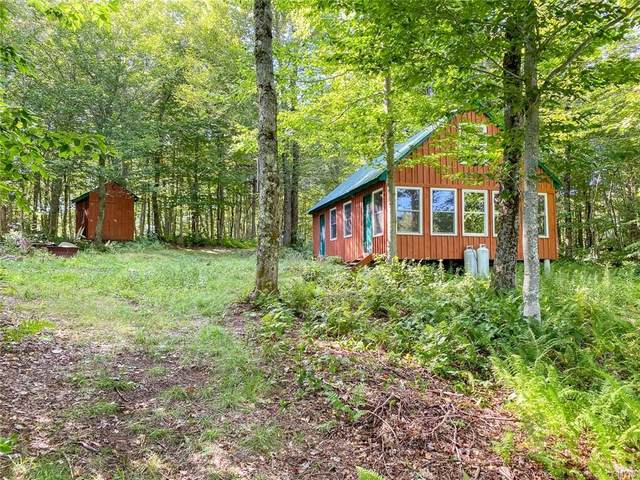 1496 Mad River Lane, Montague, NY 13367 (MLS #S1290496) :: Lore Real Estate Services