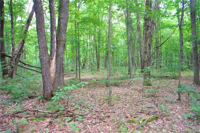 00 Smith Road #0, West Turin, NY 13325 (MLS #S1291485) :: Thousand Islands Realty