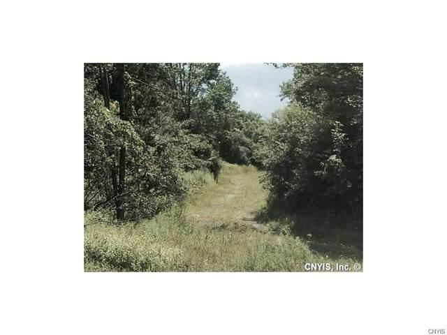 00 Route 20 W Highway, Cazenovia, NY 13035 (MLS #S1292686) :: Lore Real Estate Services