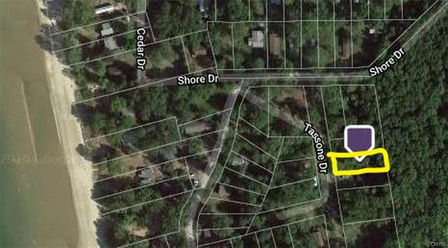 Lot 42.1 Tassone Drive, Ellisburg, NY 13636 (MLS #S1292837) :: Lore Real Estate Services
