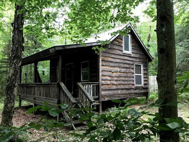 10594 Balsam Creek Road, Croghan, NY 13327 (MLS #S1293322) :: Thousand Islands Realty