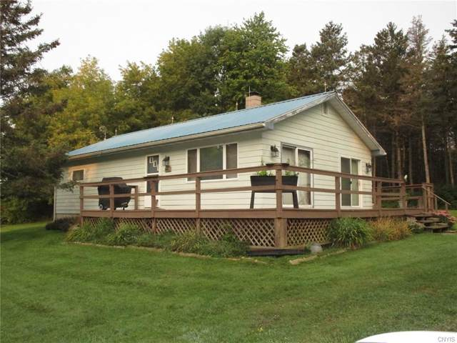 44611 Co Route 100-A Road, Alexandria, NY 13640 (MLS #S1294257) :: Robert PiazzaPalotto Sold Team