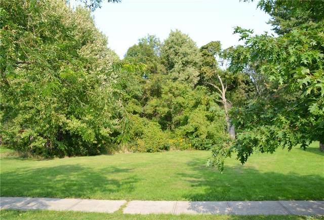 #1 Market Street, Cape Vincent, NY 13618 (MLS #S1294408) :: Thousand Islands Realty