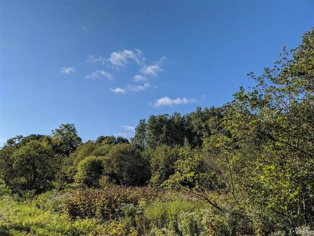 0 Gardner Road, Montague, NY 13367 (MLS #S1295234) :: Thousand Islands Realty