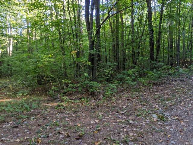 7720 Shaw Road, Watson, NY 13367 (MLS #S1295599) :: BridgeView Real Estate Services