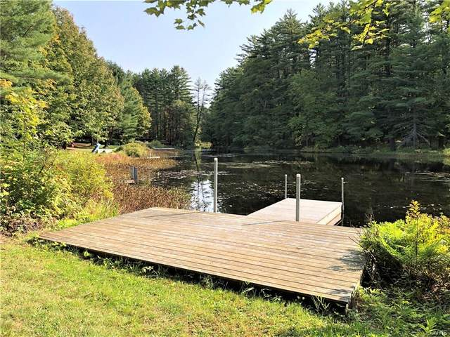 7654 N Shore Road, Watson, NY 13343 (MLS #S1295641) :: Lore Real Estate Services