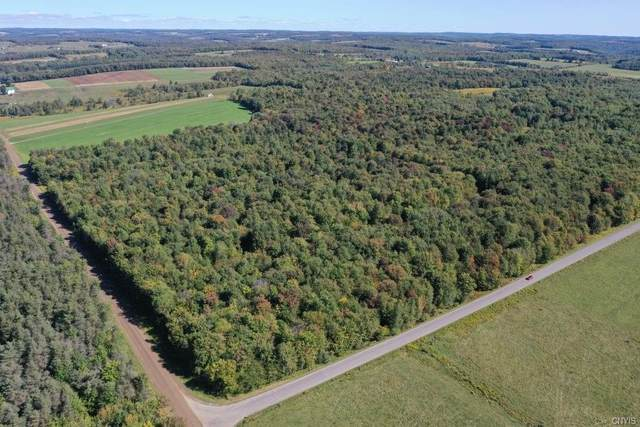 00 Heselton Gully Road, Independence, NY 14897 (MLS #S1296746) :: Lore Real Estate Services