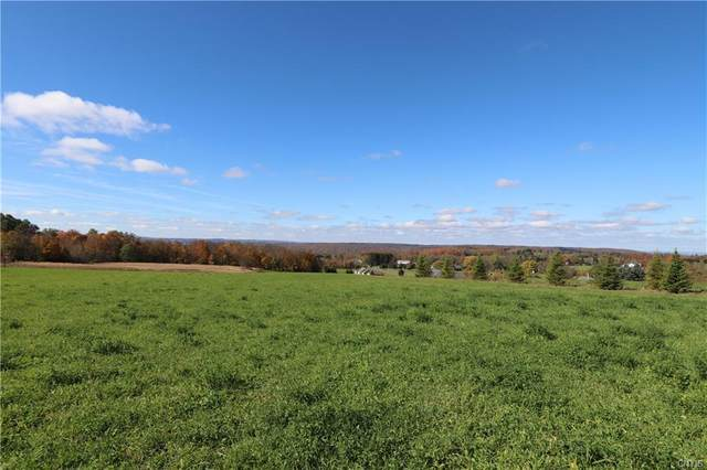 Lot 8 Route 91, Pompey, NY 13138 (MLS #S1297026) :: Thousand Islands Realty