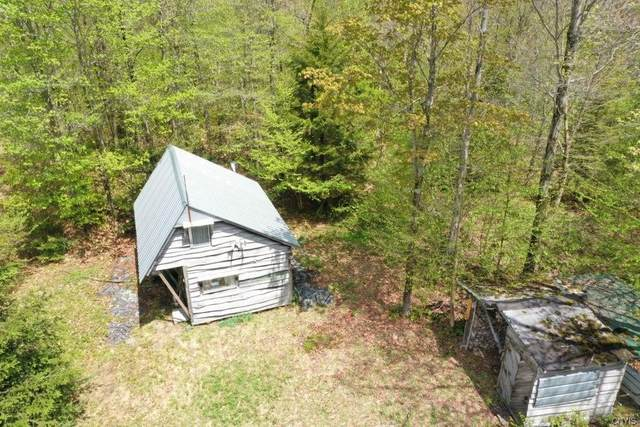 00 Glenfield Western Rr Bed, Osceola, NY 13437 (MLS #S1297218) :: BridgeView Real Estate Services