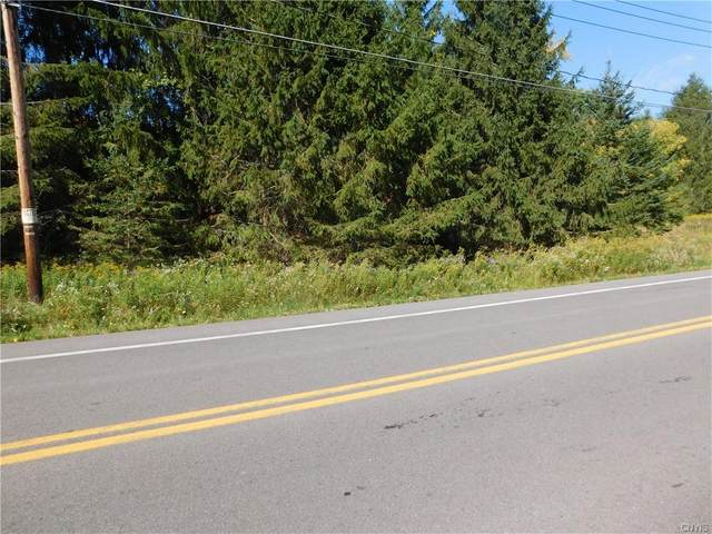 Lot AB Marietta Rd, Marcellus, NY 13110 (MLS #S1297891) :: Thousand Islands Realty