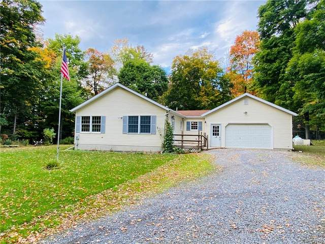314 Buck Road, Lansing, NY 14882 (MLS #S1298555) :: Thousand Islands Realty