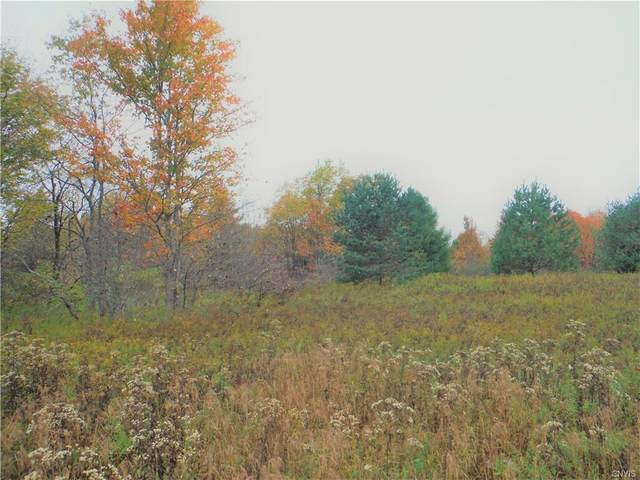 00 Bower Road, West Turin, NY 13325 (MLS #S1298847) :: BridgeView Real Estate Services