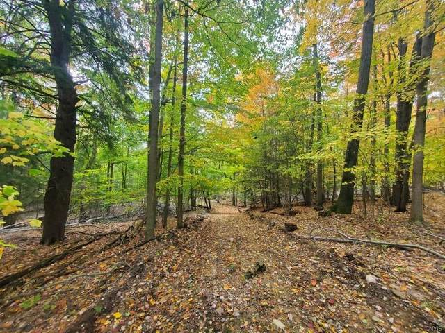 00 Reddy Hollow Road, Dansville, NY 14807 (MLS #S1299015) :: Thousand Islands Realty