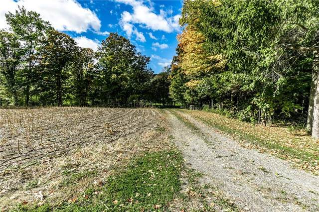 0000 Clark Hollow Road, Lafayette, NY 13084 (MLS #S1300422) :: Thousand Islands Realty